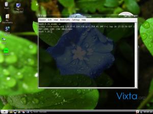 vixta2