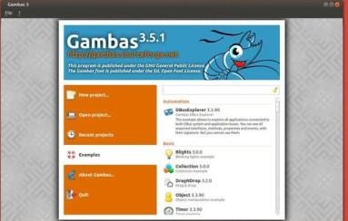 gambas-35-ubuntu1310
